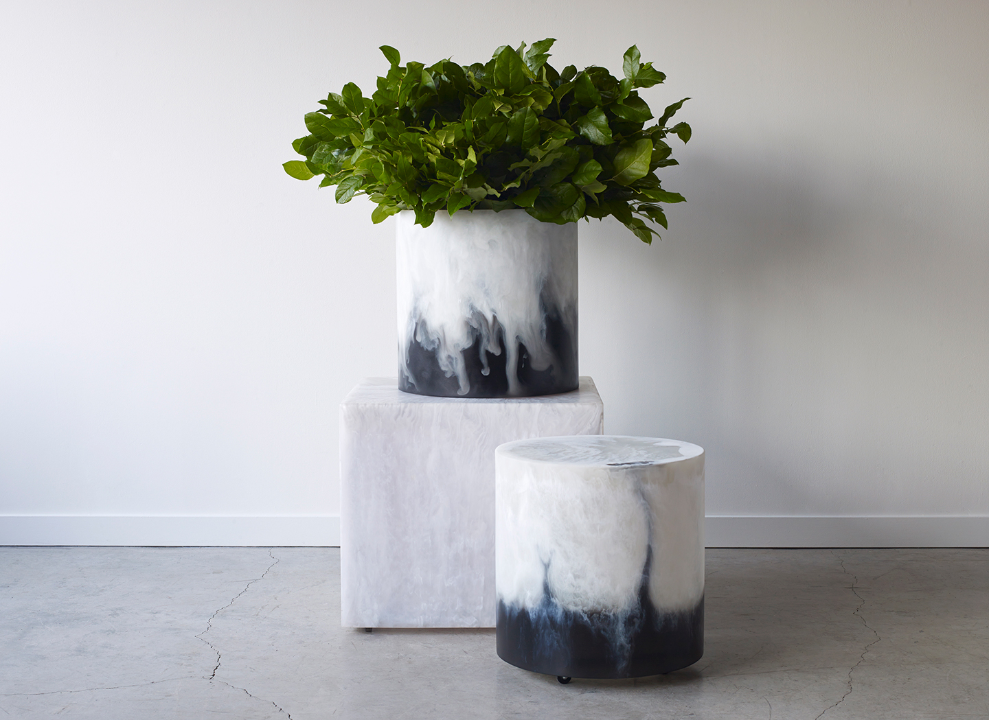 Modern stools and a plant