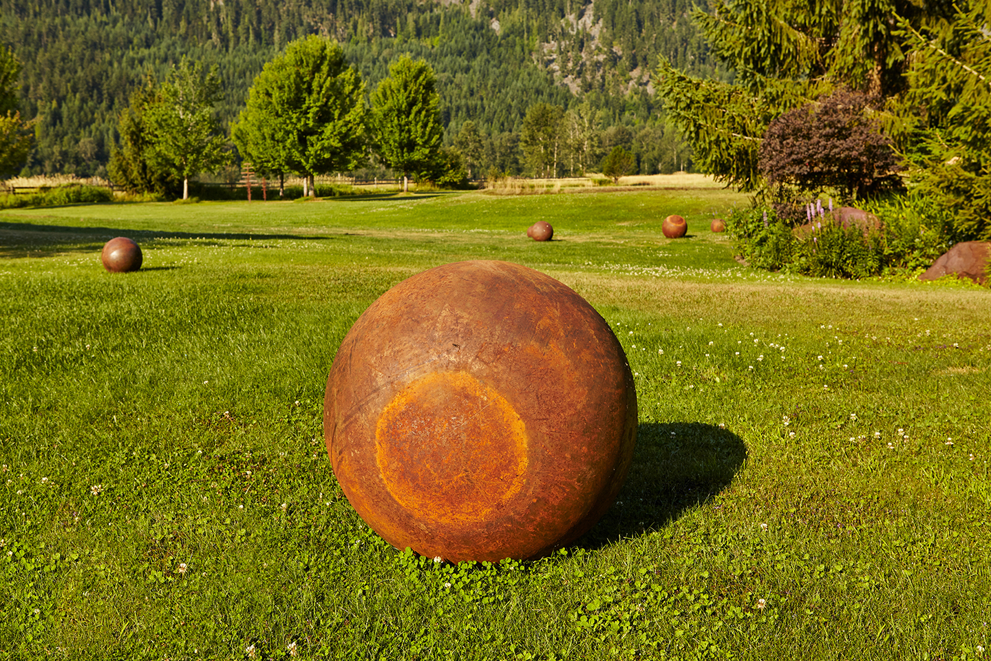 Lunar Steel Balls in Grass Field
